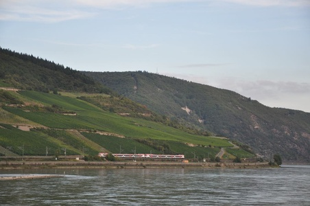 Image for Real Germany: Rhine